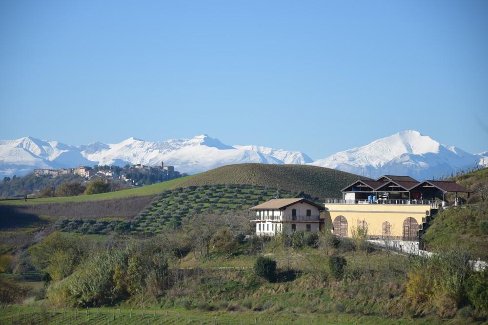 Image of Nyereséges Olasz Ökológiai Pincészet