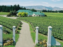 Image of New Zealand Wine Estate for Sale