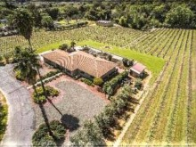 Image of Napa Valley Vineyard with Winery Permit