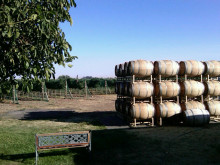 Image of Oregon Estate Winery & Vineyard