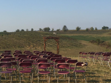 Image of Vineyard-Winery-Event Venue in Kentucky