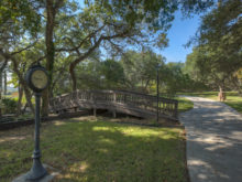 Image of Beautiful Texas Vineyard for Sale