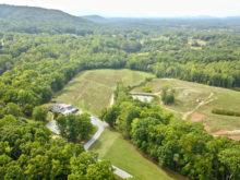 Image of Virginia 18 Acre Turn Key Vineyard & Winery