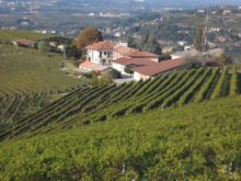 Image of Alba – 16.6 Acres Vineyard Winery Villa