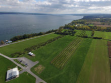 Image of Finger Lakes Vineyard, Winery, and Inn